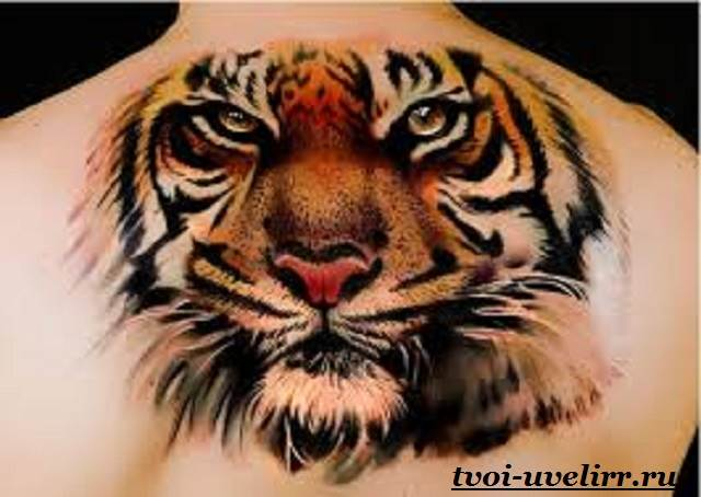 Тату-тигр-и-её-значение-4
