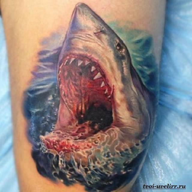 Тату-акула-и-её-значение-20