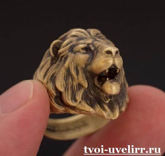 Кольцо-лев-Особенности-и-значение-кольца-лев-5