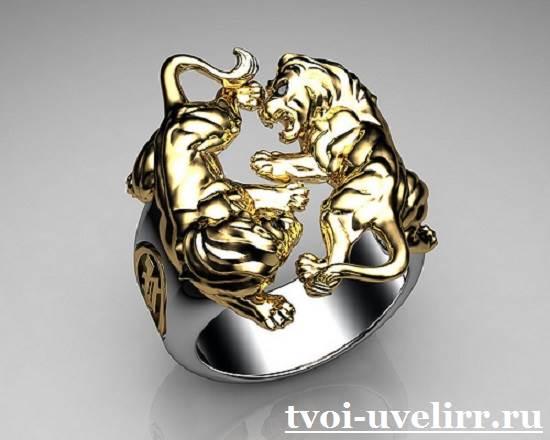 Кольцо-лев-Особенности-и-значение-кольца-лев-9