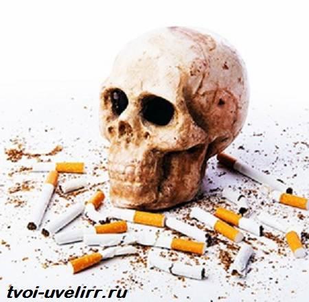 Zerosmoke-биомагниты-от-курения-Отзывы-и-цена-на-Zerosmoke-5