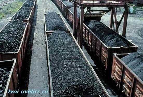 Каменный-уголь-Свойства-добыча-и-применение-каменного-угля-7