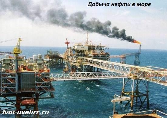 Что-такое-нефть-Свойства-добыча-применение-и-цена-нефти-4