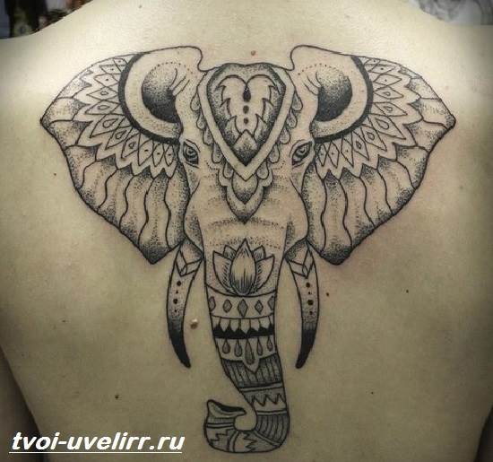 Тату-слон-Особенности-виды-и-значение-тату-слон-3