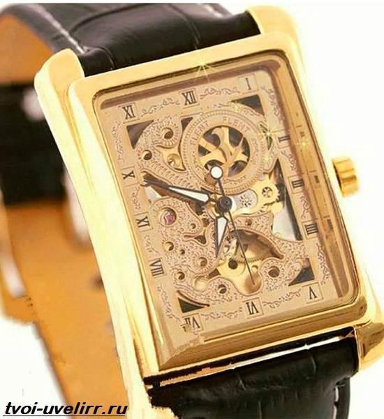 Часы-Skeleton-Winner-Особенности-цена-и-отзывы-о-часах-Skeleton-Winner-9