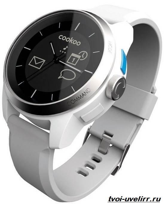 Часы-CooKoo-Описание-особенности-отзывы-и-цена-часов-CooKoo-3