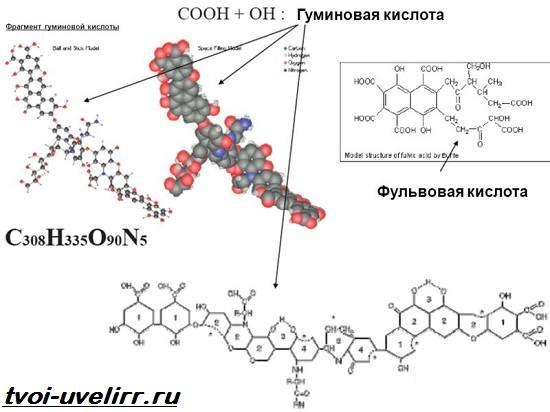 Гуминовая-кислота-Свойства-добыча-применение-и-цена-гуминовой-кислоты-5