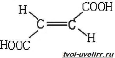 Фумаровая кислота биологическая роль. Кислота фумаровая: формула, применение и вред