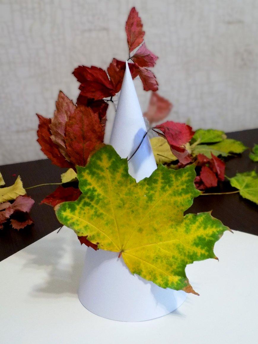 aplicați frunzele din varicoză