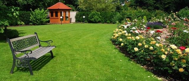 Английский газон со скамейкой