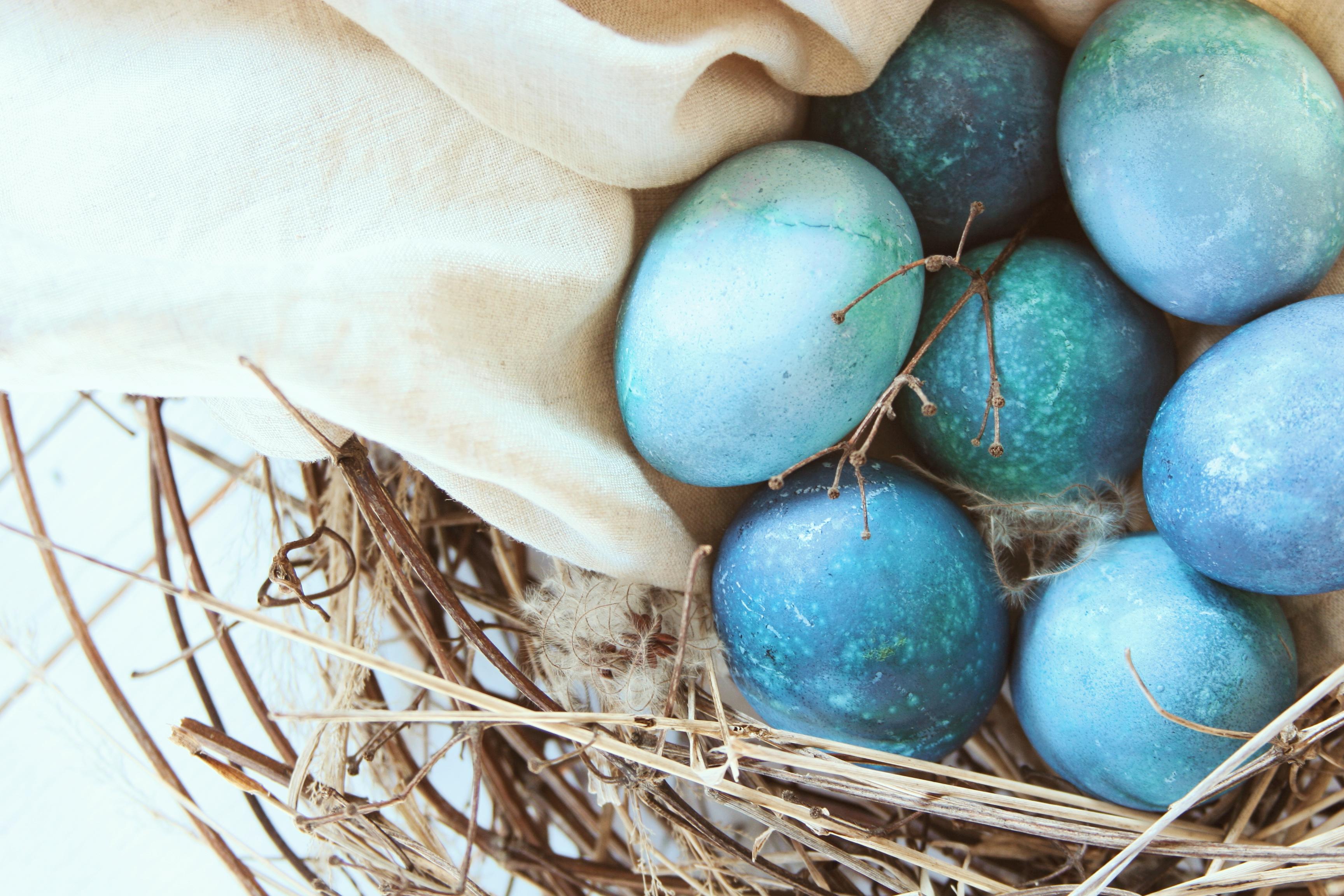 Barvení vajíček červeným zelím