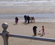 Donkey rides on the Blackpool beaches