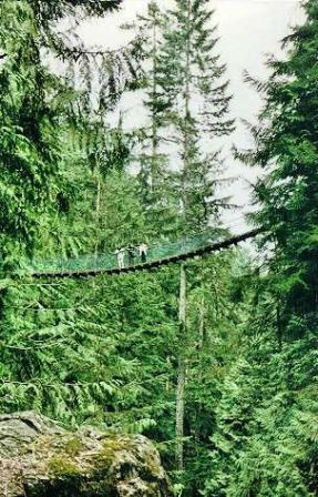 Suspension rope bridge, Lynn Canyon, outside Vancouver.