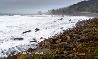 Along the road to Crescent City, CA