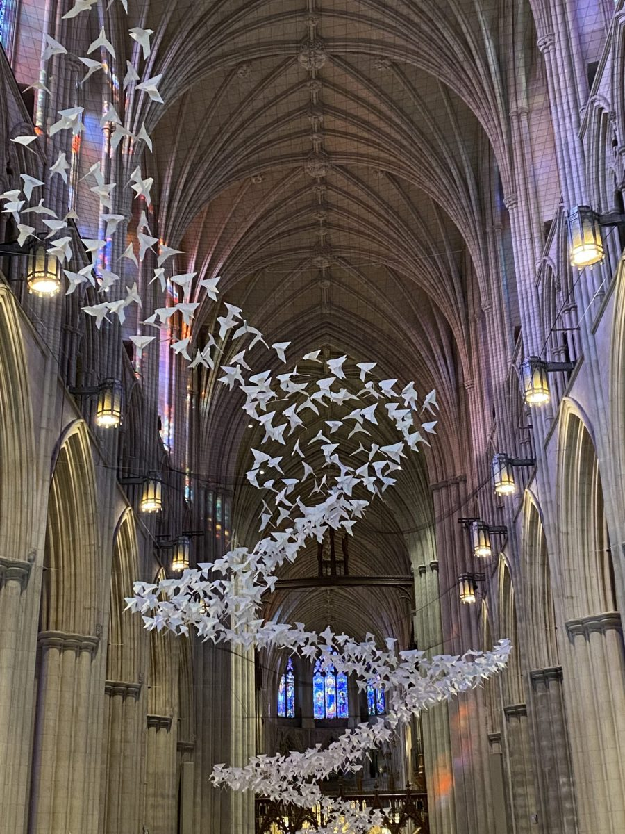 Read more about the article Fluttering of Paper Wings