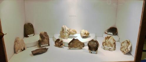 Tualatin Valley Rock and Gem Club (33)