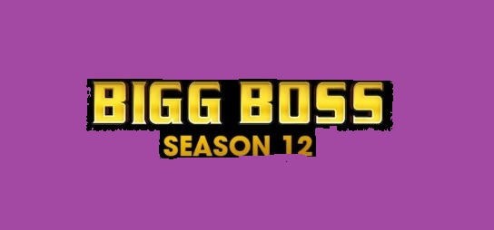'Bigg Boss 12' Jodi Contestants Name List, Plot, Timings Colors| TVSERIALINFO