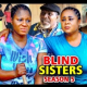 Blind Sisters Season 5 & 6 [Nollywood Movie]