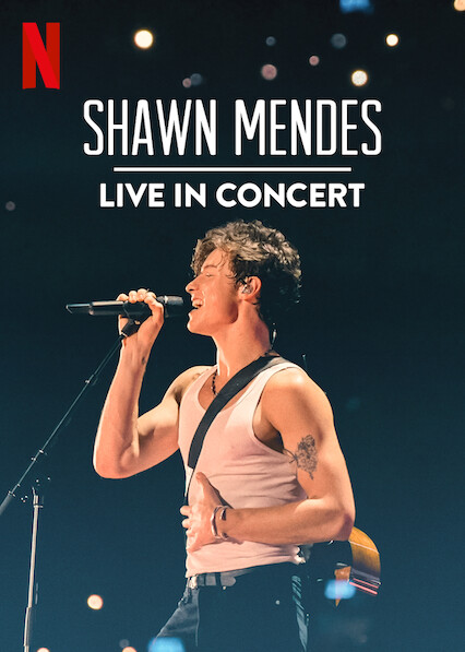 Shawn Mendes: Live in Concert on Netflix USA
