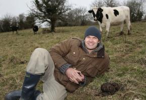 monty_cow_pattie_field