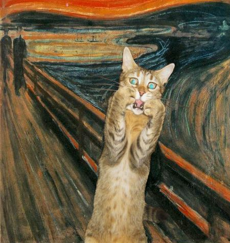 the_scream____ing_cat