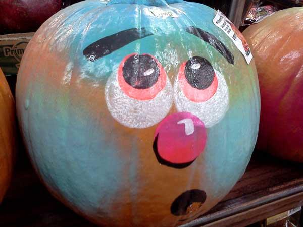大南瓜 big face pumpkin
