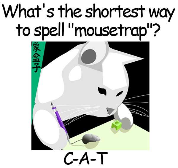 cat mousetrap