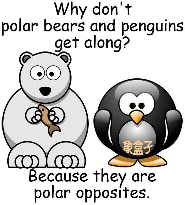 polar bears 北極熊 penguins 企鵝 polar opposites 截然相反