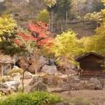 【宮城】結合了秋保的自然與文化!!來到天守閣自然公園治癒一下吧!