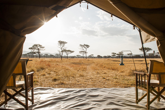 camping safari adventure