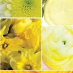 April, April, Gelb trag' ich, wann ich will – 12 Colours of Handmade Fashion