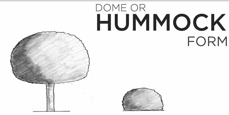Machine generated alternative text: DOME OR  HUMMOCK  FORM
