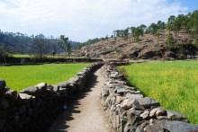 Trails - Kumaon