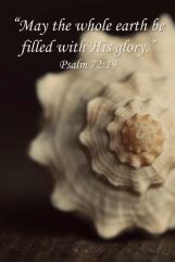 Shell:Glory