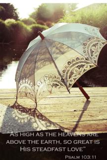 Umbrella:Steadfast
