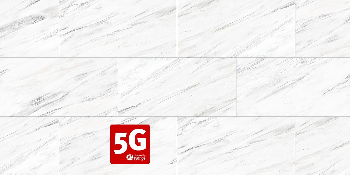 VRG1034-White Veil 5G