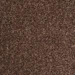 splendid brown 880