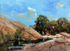 Rock Pool Flinders Ranges Ray Hewitt_WR