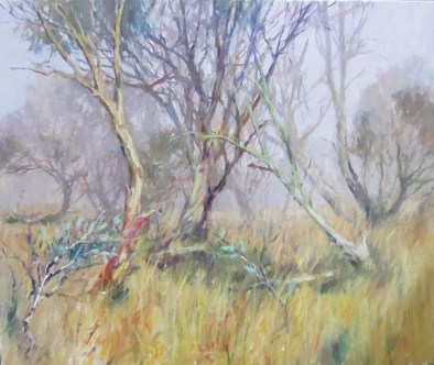 Snow gums at Dinner Plain, Max Wilks