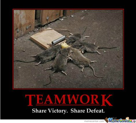 teamwork-funny-fun-lol-memes-pics-images-photos-pictures-bajiroo-4