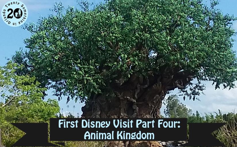 First Disney Visit Part Four Animal Kingdom Twenty Something In