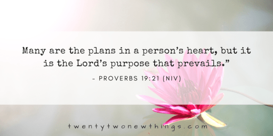 many are the plans in a persons heart but it is the lords purpose that prevails.