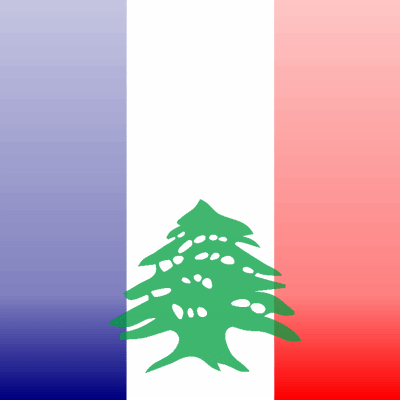 'Solidarity with Lebanese ISIS victims, like with Paris' (3/5)