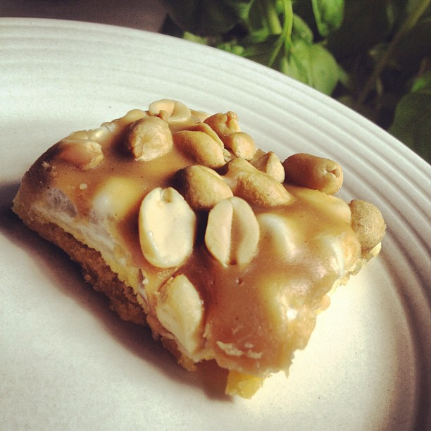 A square of peanut-topped nutty peanut bars on a white plate