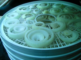Dehydrating Onions for Winter Storage