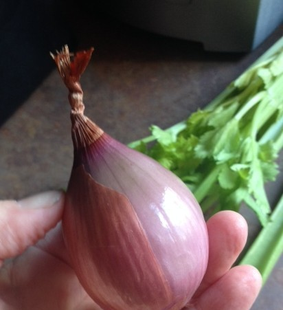 A perfectly purple shallot