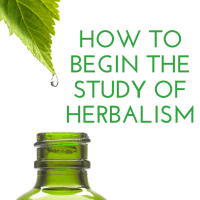 How to Begin the Study of Herbalism
