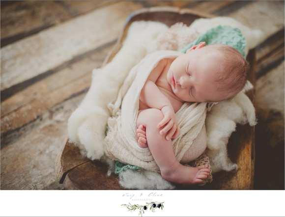 Newborn photography session Madison, WI