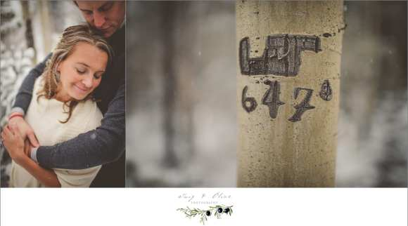 rustic winter wedding colorado