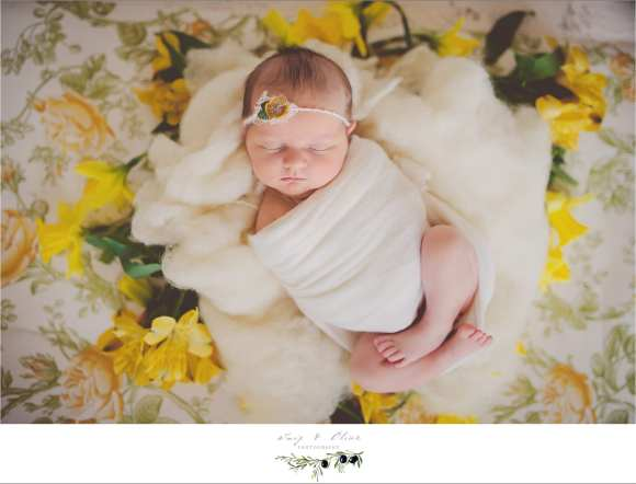 yellow and cream vintage newborn session